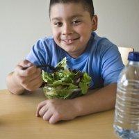 Alimentação ideal para crianças com obesidade