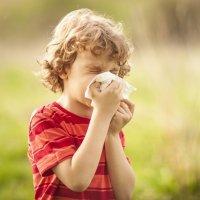 Remedios caseiros para a alergia ao pólen