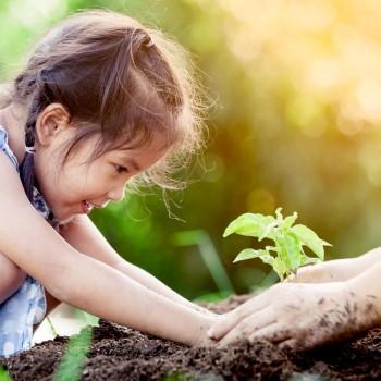 Decálogo para que as crianças cuidem do meio ambiente