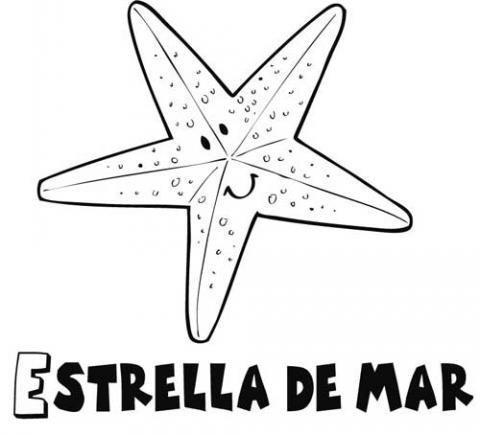 Dibujo para colorear de una estrella de mar. Dibujos de animales