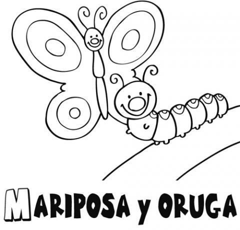 Dibujo de una mariposa y oruga para colorear. Dibujos para niños