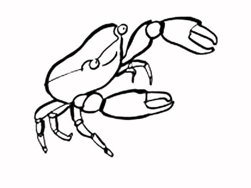 Dibujo infantil de cangrejo para colorear