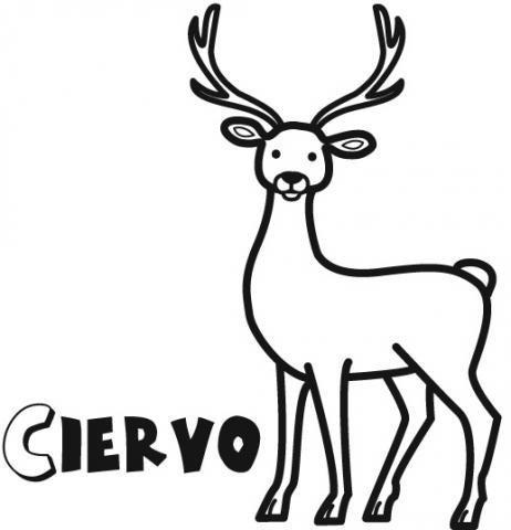 Dibujos de ciervo para imprimir y colorear