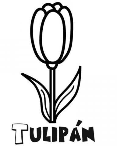 Dibujos de tulipanes para colorear con niños