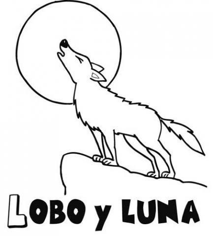 Dibujo de un lobo para colorear. Dibujos de animales para niños
