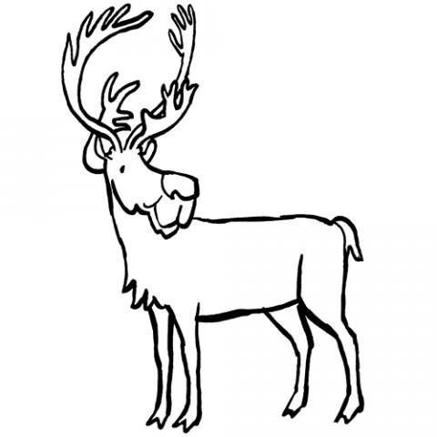 Dibujo infantil de un reno para imprimir y colorear