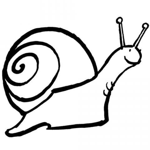 Dibujos infantiles de un caracol en su concha para colorear