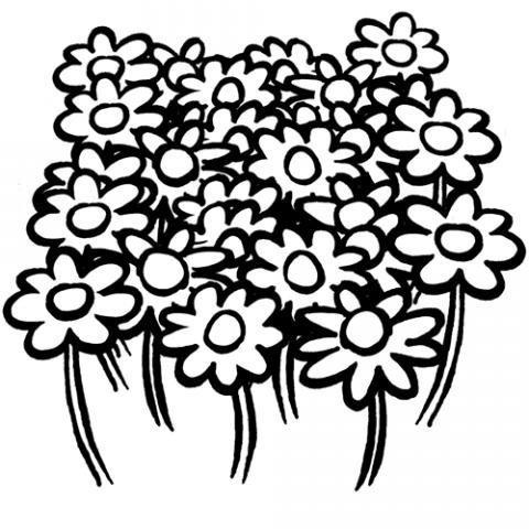 Dibujos de un campo de flores para colorear por los niños
