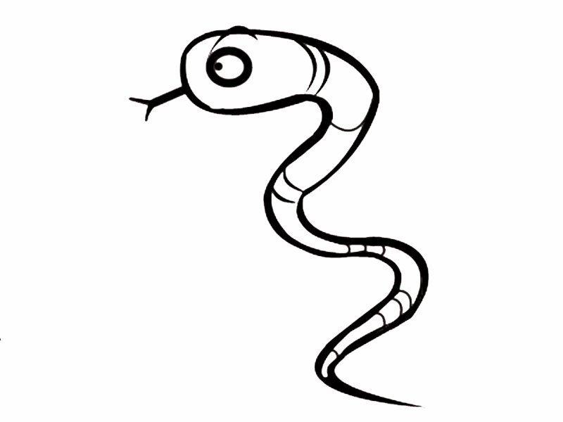 Serpiente de perfil