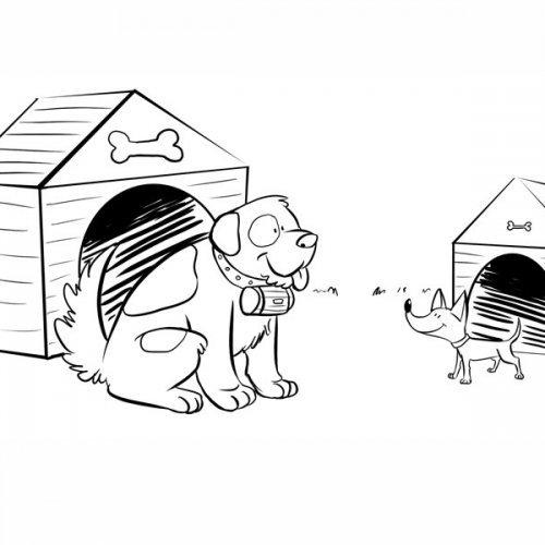 Perros en su caseta