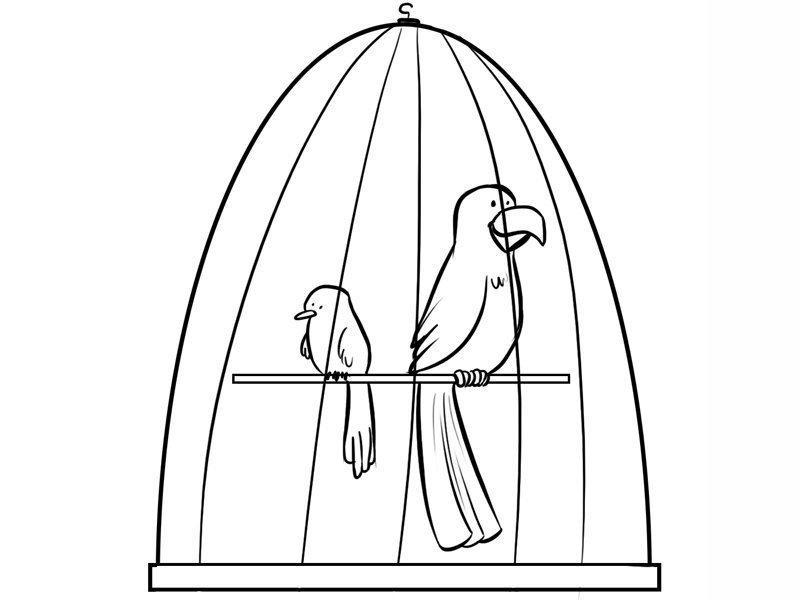 Dibujo infantil de jaula con pájaros para niños