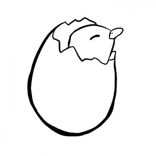 Pollito rompiendo el huevo
