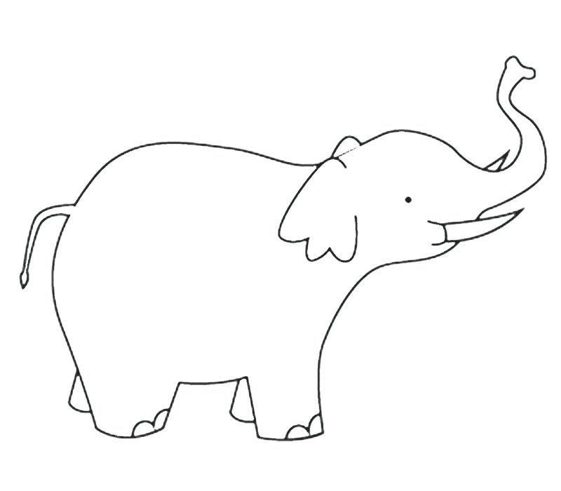 Elefante con colmillos