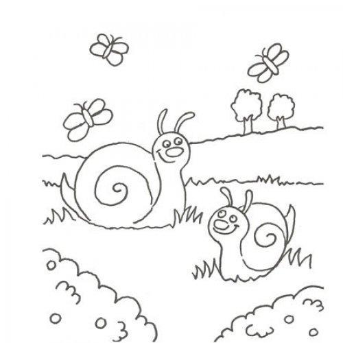 Desenho de caracóis e de borboletas para pintar