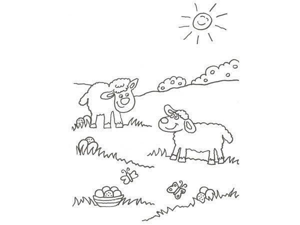 Desenho de ovelhas para pintar