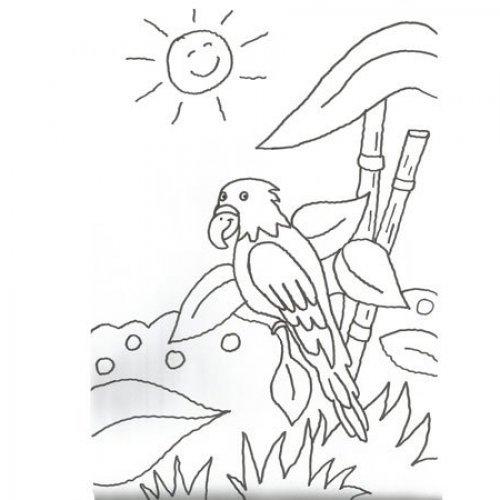 Desenho de um papagaio para colorir