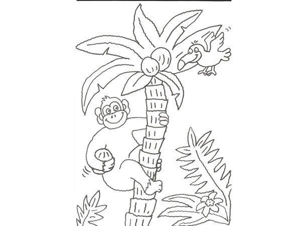 Desenho De Gorila Numa Arvore Para Pintar