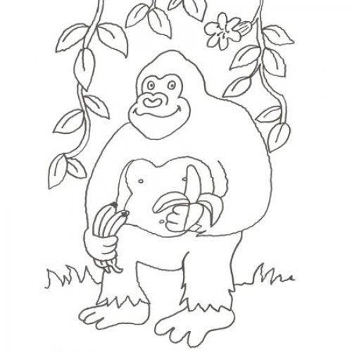 Desenho de um gorila para colorir