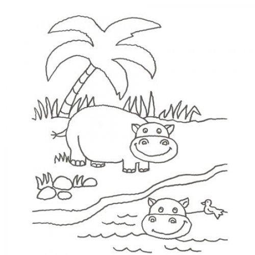 Desenho de hipopótamos para colorir