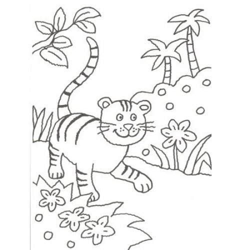 Desenho de um tigre para pintar