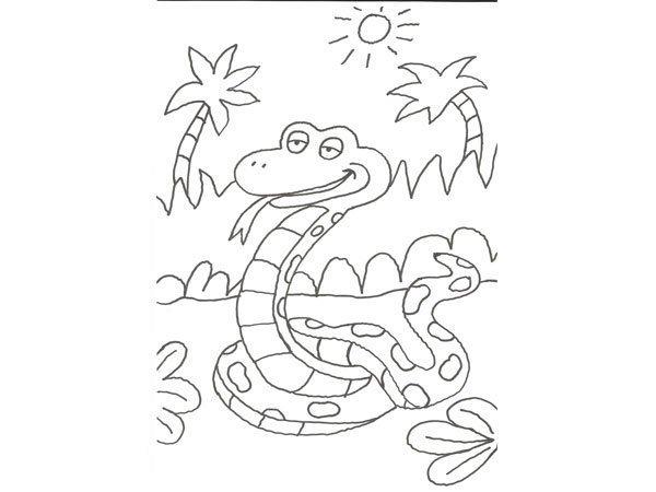 Desenho para pintar de uma serpente