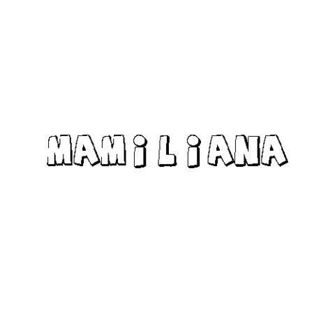 MAMILIANA