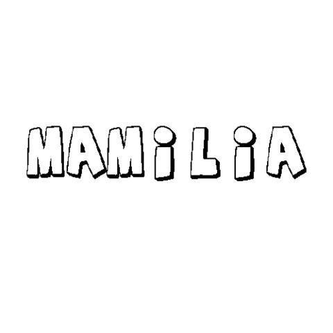 MAMILIA