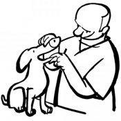 Desenho de um veterinário para pintar