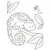 Desenho para colorir de um camaleão