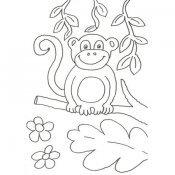 Desenho de um macaco para colorir