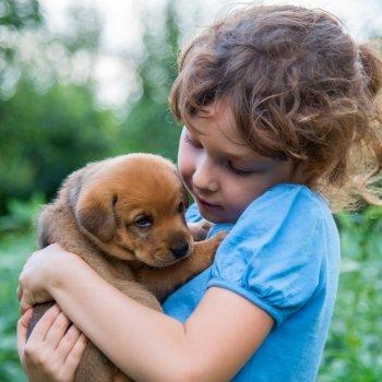 A relação das crianças com os animais de estimação