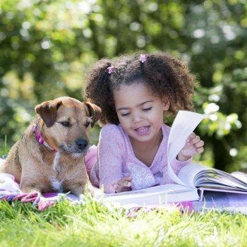 Um animal de estimação não deve ser um brinquedo para as crianças