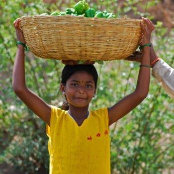 Os riscos e abusos do trabalho infantil