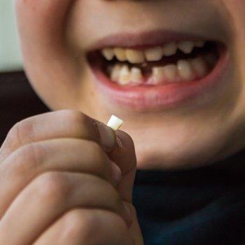 O poder dos dentes de leite para salvar uma vida