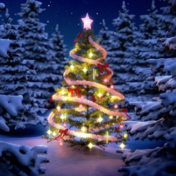 As histórias e lendas da Árvore de Natal