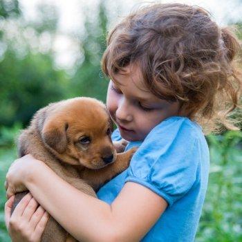 Quais os benefícios para as crianças em ter um animal de estimação