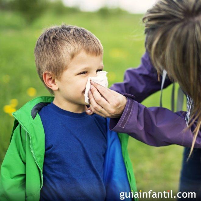 remedio caseiro para descongestionar o nariz sinusite