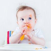 O que é o Baby Led Weaning ou Desmame dirigido pelo bebê