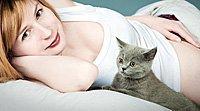 Riscos da toxoplasmose durante a gravidez